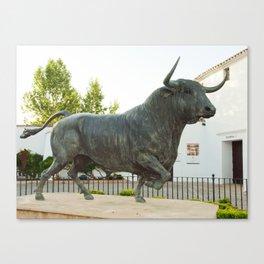 bull stature. Spain Canvas Print