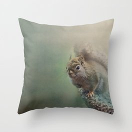 Foggy Morning Squirrell Throw Pillow