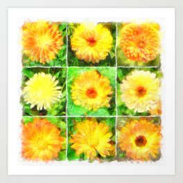 Watercolour Collage of Yellow And Orange Marigolds Art Print