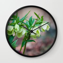 Green Hellebore Wall Clock