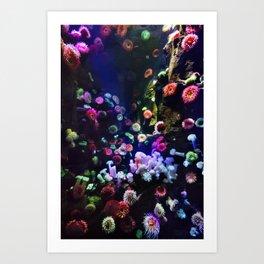 Friend of Anemone Art Print