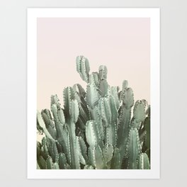 Cactus on Blush Art Print