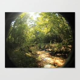 creeky Canvas Print