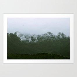 White spine Art Print