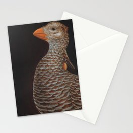 Heath Hen (Tympanuchus cupido cupido)  Stationery Cards