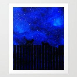 Chat dans la nuit, ciel bleu Art Print