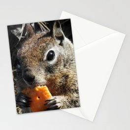 Mm Cheezy Stationery Cards