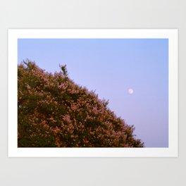 buenos noches luna Art Print