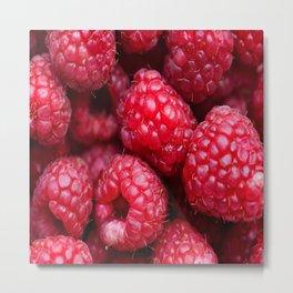 background red berries Metal Print