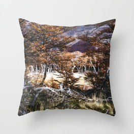 Fall in Patagonia, Argentina Throw Pillow
