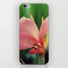 Beauty is in the eye of the beholder  iPhone & iPod Skin