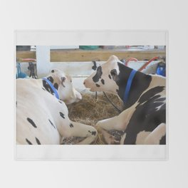 Pair Of Black And White Cows 2 Throw Blanket