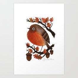 English Robin Art Print