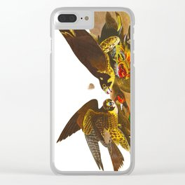 Great-footed Hawk Clear iPhone Case
