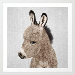 Donkey - Colorful Art Print
