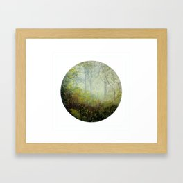 Benevolent Canopy Framed Art Print