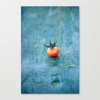 king Canvas Prints featuring king by Claudia Drossert