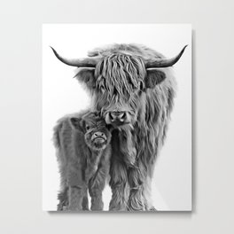 Highland Cow and The Baby Metal Print