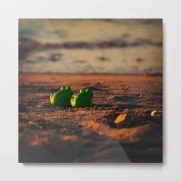 frog admiring the sunset Metal Print