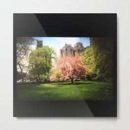 """""""Urban Nature IV"""" : My35mmViewfinder Metal Print"""