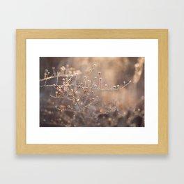 frost magic Framed Art Print