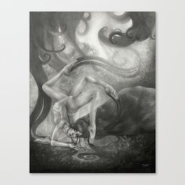 Refulgent Obscurity Canvas Print