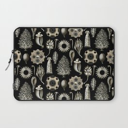 Ernst Haeckel - Scientific Illustration - Calcispongiae Laptop Sleeve