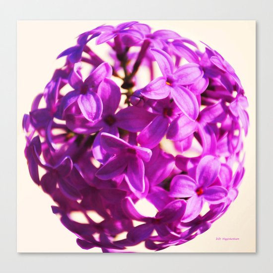 Lilac Ball two Canvas Print
