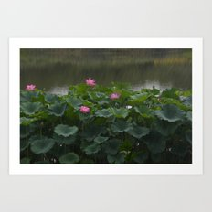 Flowers in the Rain Art Print