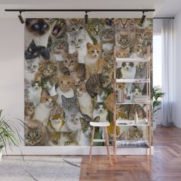 A Gathering of Cats Wall Mural