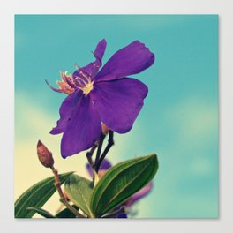 Grape Crush Canvas Print