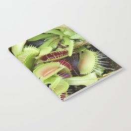 Venus Fly Trap Notebook
