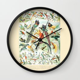 Exotic Birds // Oiseaux IV by Adolphe Millot 19th Century Science Textbook Diagram Artwork Wall Clock