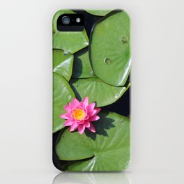 Pink Flower in the Pond iPhone Case