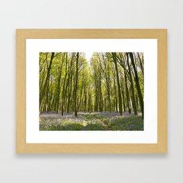 Passage through the Woods Framed Art Print