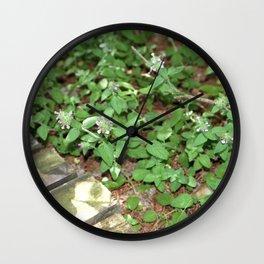 Little Purple Buds. Wall Clock