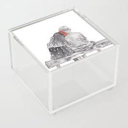 Boy Meets Girl Acrylic Box