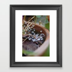 water's web Framed Art Print