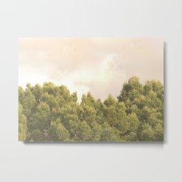 Tree tops and sky Metal Print