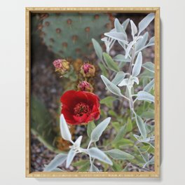 Cactus Flower Series: Red Flowers and Silver Leaves Serving Tray