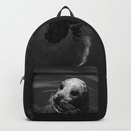 Friendly Seal III Backpack
