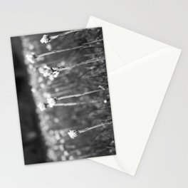 In My Back Yard Stationery Cards