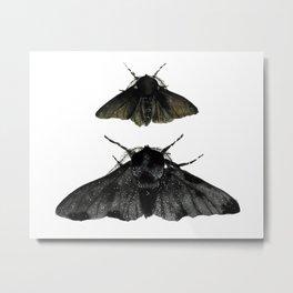 Black Moths Metal Print