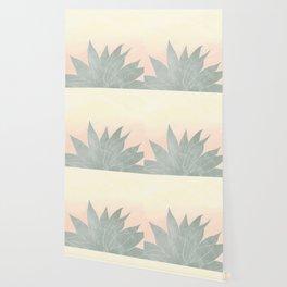 sunrise agave plant Wallpaper