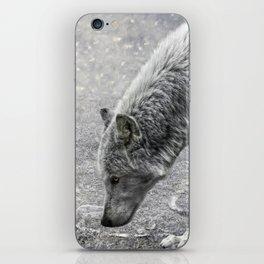 ivory and ebony iPhone Skin