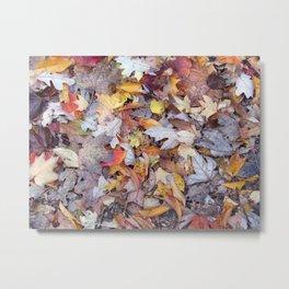 leaf litter menagerie Metal Print