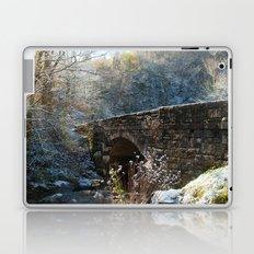 Early Snow Laptop & iPad Skin