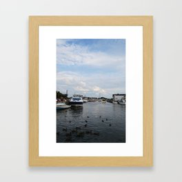Ducking Annapolis Framed Art Print