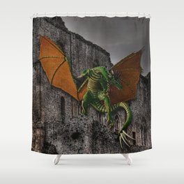 Dragon & Castle Artwork Shower Curtain