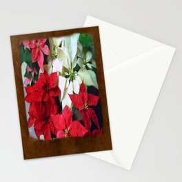 Mixed color Poinsettias 1 Blank P3F0 Stationery Cards